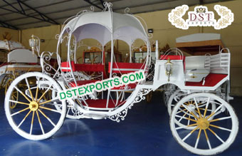 Graceful Cinderella Horse Carriage