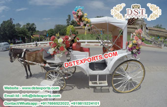 New Touring Horse Drawn Carriage