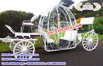 Lovely Cinderella Wedding Horse Buggy