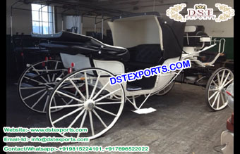 Black Vis a  Vis Horse Drawn Buggy