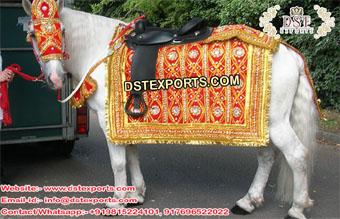 Indian Heavy Embroidered Horse Costume
